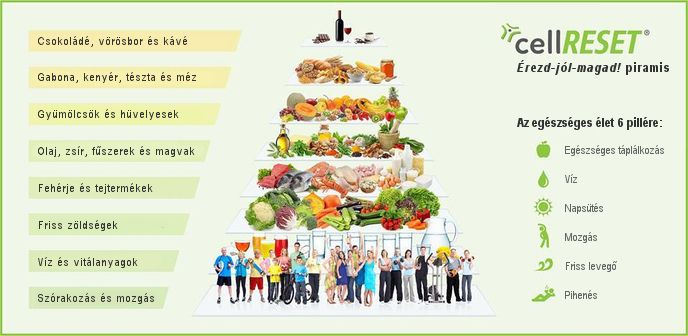 A hatékony zsírégetés elmélete és számításai