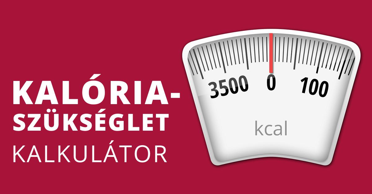 Napi kalóriaszükséglet kalkulátor   romance-tv.hu