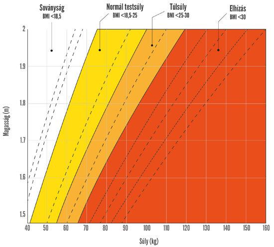 3 héten belül 4 testzsír veszít ak túlélő súlycsökkenés
