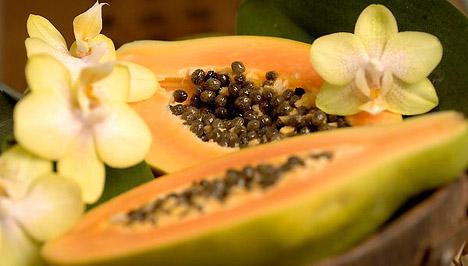 a papaya enzim segít a fogyásban