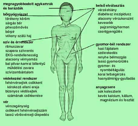 1 hónap anorexia fogyás
