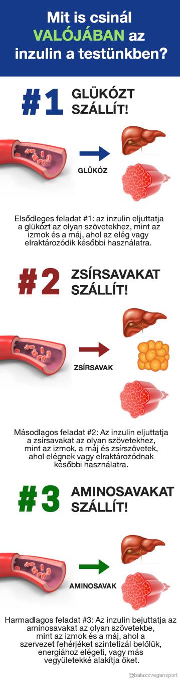 Ketogén diéta a legjobb módszer ha fogyni akarsz – BÁLINT JÁNOS