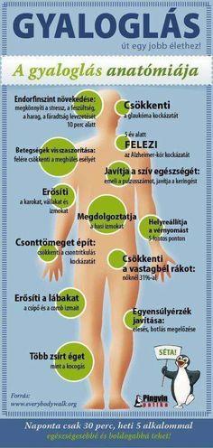 sejtes test vékony