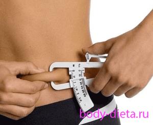 A test zsírjairól? - Állategészségügy -