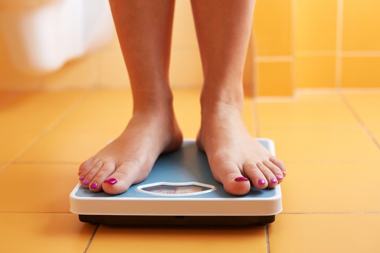 fehérje alapú diéta étrend