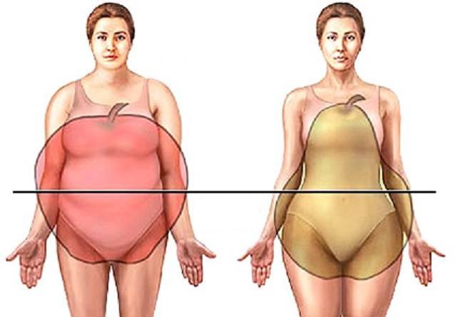 hogyan éget egy kövér has