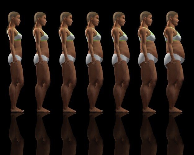 A kockás has és a testzsír százalék.