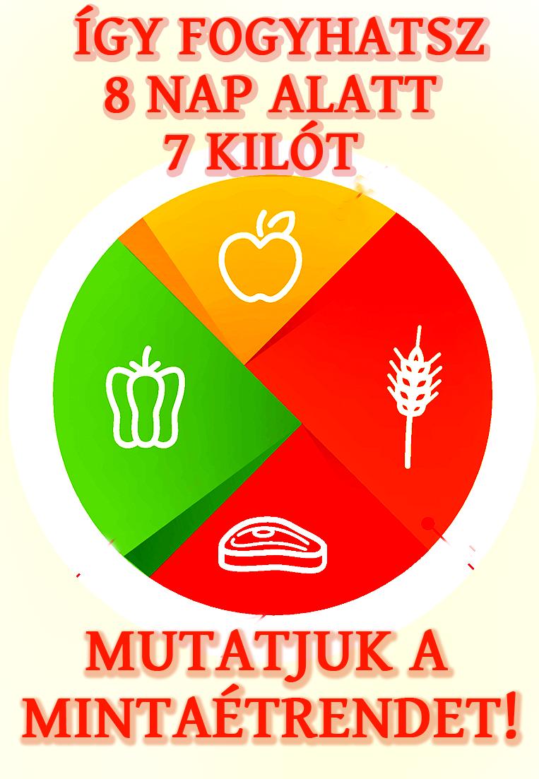 Bevezetés az egészséges táplálkozásba